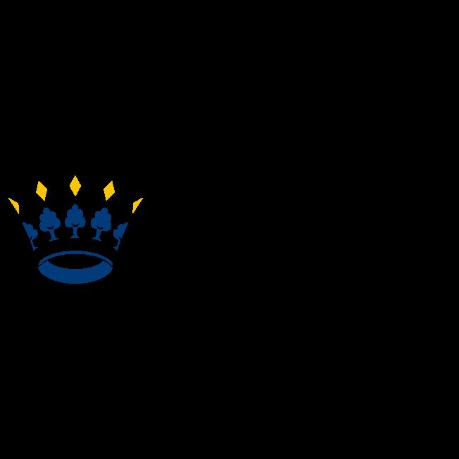 's Hertogenbosch, deelnemer Common Ground